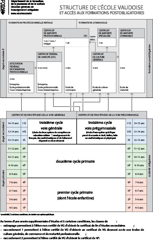 DP_structure_Ecole